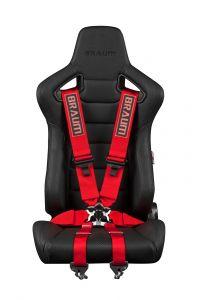 Braum ® - Red 6 Point 3 Inch FIA Racing Harness (BRH-RDF6)
