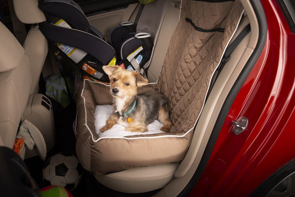 Seat Armour ® - Black PetBed2GO 2 in 1 Pet Bed Cushion And Waterproof Car Seat Protector (PET2G100B)
